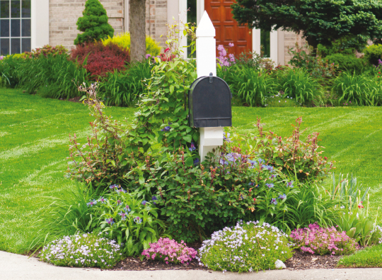 Mailbox Gardens-1