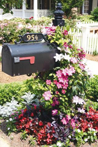 Mailbox Gardens-3